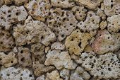 pic of pumice-stone  - porous pumice stones Wall texture close up - JPG