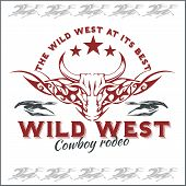 image of bucking bronco  - Wild west  - JPG
