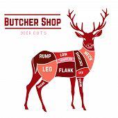 foto of deer meat  - Deer meat cuts with elements and names in color - JPG