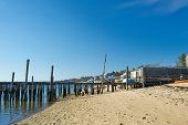 picture of cape-cod  - Beach at Provincetown - JPG