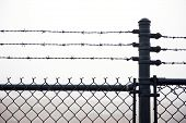 stock photo of barbed wire fence  - Close up shot of a wet barbed wire fence in a dense fog - JPG