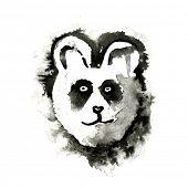 stock photo of panda bear  - Panda bear - JPG