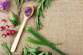 foto of sackcloth  - Green herbs and leaves on sackcloth - JPG