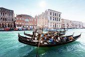 picture of gondola  - gondolas on canal - JPG