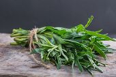 picture of fragrance  - small bunch of fresh tarragon on table - JPG