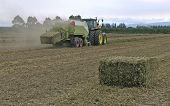 foto of hay bale  - a bale of hay prodruding from the back of the baler - JPG