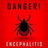 Ticks Danger Sign. Mite Warning Sign. Encephalitis Parasite Icon.  Illustration Of Tick Warning Sign poster