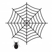 Spider Web Icon On White Background. Flat Style. Spider Web And Spider Icon For Your Web Site Design poster