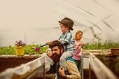Greenhouse Hobby. Greenhouse Hobby Of Happy Family. People Have Hobby In Greenhouse. Greenhouse Hobb poster