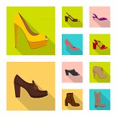 Isolated Object Of Footwear And Woman Logo. Set Of Footwear And Foot Stock Bitmap Illustration. poster