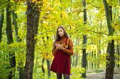 Fall Is Already Here. Woman Enjoy Forest Alone. Nature Is Source Of Power For Her. Natural Beauty. A poster