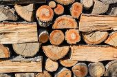 Background Of Ends Of Logs And Dry Firewoods. Close-up  Of Outdoor Stack Of Wood On A Sunny Day. Fol poster