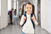 Front View Of Pretty Brunette School Girl Happy Smiling In Camera. Funny Little Girl With Bag On Bac poster