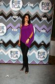 LOS ANGELES - JAN 8:  Annie Parisse attends the FOX TV 2013 TCA Winter Press Tour at Langham Hunting