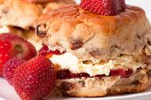stock photo of devonshire  - macro picture of scones  with fresh strawberries - JPG