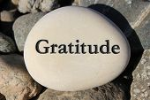 pic of reinforcing  - Positive reinforcement word Gratitude engrained in a rock - JPG