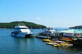 Whale watching boats and sea kayaks in historic Bar Harbor, Maine