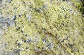 stock photo of feldspar  - Texture of natural gray granite with green scales mineral - JPG