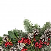 picture of snow border  - Christmas background floral border with snow - JPG