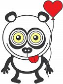 foto of panda  - Weird panda bear with funny bulging eyes while staring at you - JPG