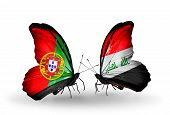 foto of iraq  - Two butterflies with flags on wings as symbol of relations Portugal and Iraq - JPG