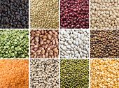 picture of pea  - Collage of 12 different legumes  - JPG