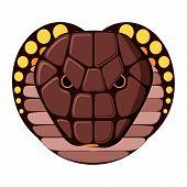 stock photo of snake-head  - Snake head on white background - JPG