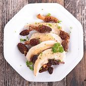 image of morels  - chicken and morel - JPG