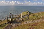 picture of southwest  - Southwest Coast footpath at Baggy Point headland Croyde North Devon England a popular walk throughout the year ths Island of Lundy is visible on the horizon - JPG