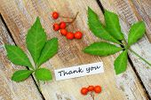 foto of rowan berry  - Thank you card with two green leaves and rowan berries on rustic wooden surface - JPG