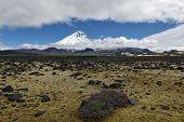 pic of slag  - Nature of Kamchatka - JPG