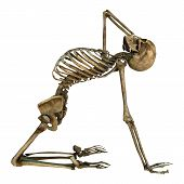 pic of skeleton  - 3D digital render of a human skeleton doing sport isolated on white background - JPG