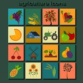stock photo of husbandry  - Set agriculture - JPG