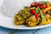 picture of curry chicken  - Chicken curry with rice on white plate  - JPG