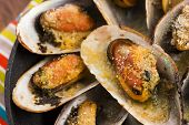 image of clam  - Delicious Fresh Clams with herbs and garlic - JPG