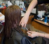 foto of hair cutting  - a woman in a salon getting a hair cut - JPG