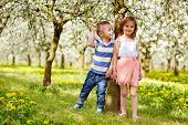 pic of orchard  - Boy and a girl in blooming orchard - JPG