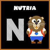 picture of letter n  - The English alphabet letter N Nutria  - JPG