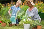 stock photo of granddaughter  - Happy grandmother with her granddaughter gardening on a sunny day - JPG