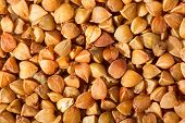 foto of buckwheat  - Buckwheat grains close - JPG
