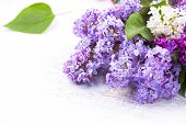 foto of violet flower  - Lilac flowers bunch over white wooden background - JPG