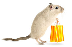 stock photo of gerbil  - Cute little gerbil with with shopping bag isolated on white background - JPG