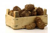 picture of taro corms  - bunch of taro root - JPG