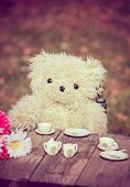 a cute teddy bear having a tea party in a backyard during summer, toned with a retro vintage instagr poster