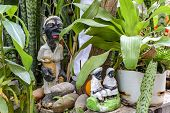 Religious Altar Of Umbanda With Plants, Religion Of African Origin Popular In Brazil poster