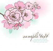 pic of cherry blossoms  - vector card with stylized cherry blossom and text - JPG