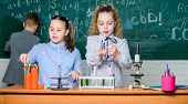 School Education. School Girls Study. Explore Biological Molecules. Future Technology And Science Co poster