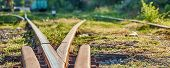 Railway Sleepers And Rails Close-up. Rusty Rails Of An Abandoned Railway In Forest poster