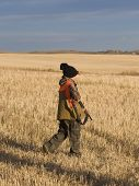 image of ringneck  - Pheasant Hunting in the autumn in a grain field - JPG