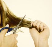 image of split ends  - Damaged dry hair splitting ends - JPG